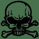 skull-46-256